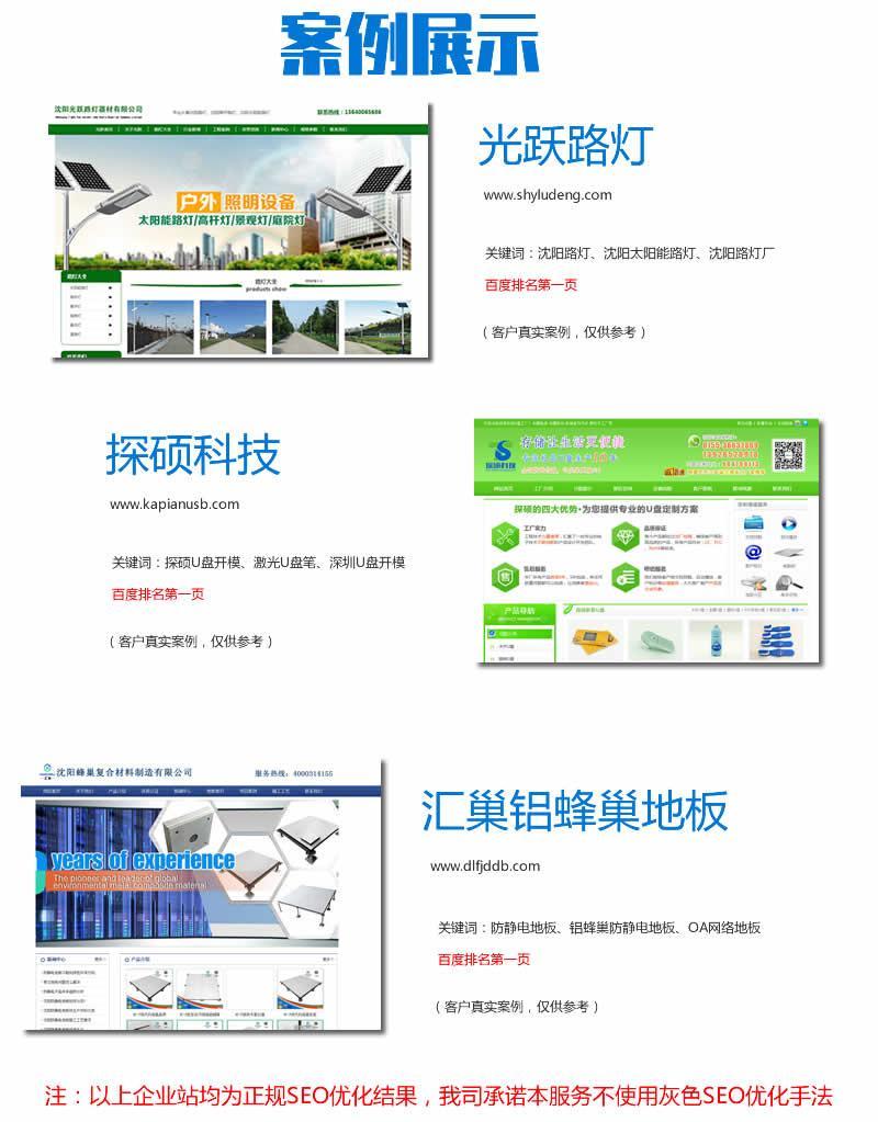 企业网站SEO优化服务(关键词排名优化)  第3张